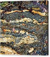 Granite Trail Canvas Print
