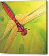 Grapeleaf Dragonfly Canvas Print