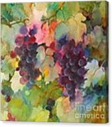 Grapes In Light Canvas Print