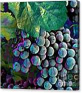 Grapes Painterly Canvas Print