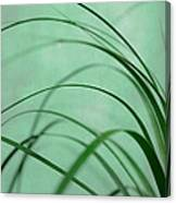 Grass Impression Canvas Print