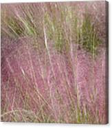 Grass Photography - Soft - By Sharon Cummings Canvas Print