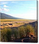 Grassy Dune Canvas Print