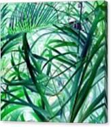 Grassy Glow  Canvas Print
