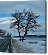 Grassy Point Winter Canvas Print