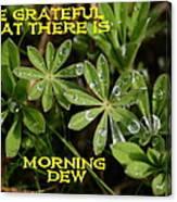 Grateful Dew Canvas Print