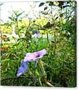 Grave Flower Canvas Print