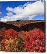Graveyard Fields In The Mountains Canvas Print