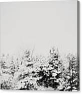 Gray December Winter Snow On Trees Photograph Canvas Print