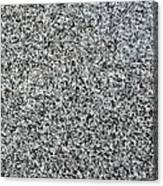 Gray Granite Canvas Print