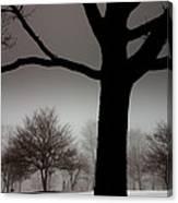 Gray Skies At Night Canvas Print