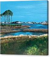 Grayton Beach State Park Canvas Print