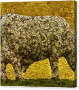 Grazing 2 Canvas Print