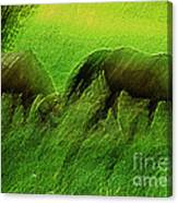 grazing Horses watercolor Canvas Print