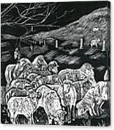 Grazing Sheep Canvas Print