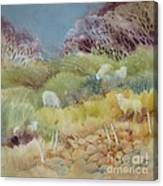 Grazing_in_the_grass Canvas Print