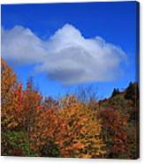 Great Balsam Mountains In The Fall Canvas Print