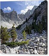 Great Basin National Park Canvas Print