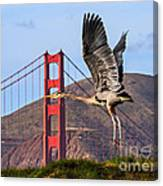 Great Blue At The Golden Gate Canvas Print