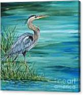 Great Blue Heron-2a Canvas Print
