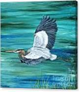Great Blue Heron-3a Canvas Print