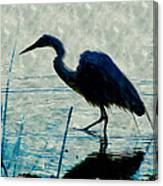 Great Blue Heron Fishing In The Low Lake Waters Canvas Print