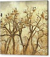 Great Blue Heron Hangout Fine Art Canvas Print