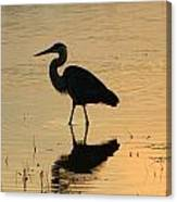 Great Blue Heron Reflected Canvas Print