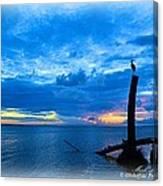 Great Blue Heron Sunrise Canvas Print