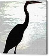 Great Blue Herons Nightside Canvas Print