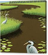 Great Blue Herons On A Lily Pad Pond Canvas Print