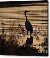 Great Blue Silhouette Canvas Print