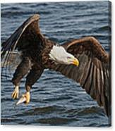 Great Catch Canvas Print