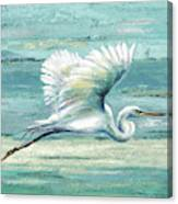Great Egret I Canvas Print