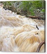 Great Falls White Water #3 Canvas Print