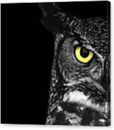 Great Horned Owl Photo Canvas Print
