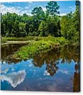Great Reflections Canvas Print