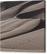 Great Sands Shapes Canvas Print