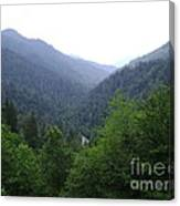 Great Smokey Mountains Canvas Print