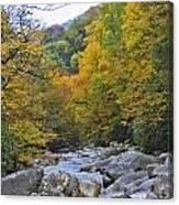 Great Smoky Mountains Creek 3 Canvas Print