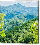 Great Smoky Mountains National Park Near Gatlinburg Tennessee. Canvas Print