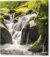 Great Smoky Mountains Tn Roaring Fork Motor Nature Trail Waterfall Canvas Print