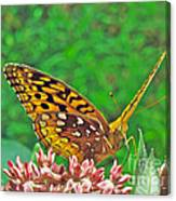 Great Spangled Fritillary Butterfly - Speyeria Cybele Canvas Print