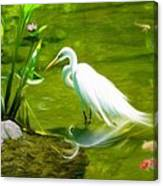 Great White Egret Bird With Deer And Fish In Lake  Canvas Print