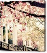 Grecian Spring Canvas Print