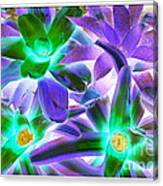 Green And Purple Cactus Canvas Print