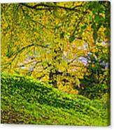 Green And Yellow Canvas Print