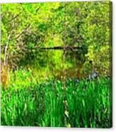 Green As Emerald's Canvas Print
