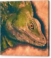 Green Basilisk Lizard Canvas Print