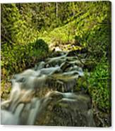 Green Colors And A Stream Canvas Print